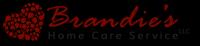 Brandie's Home Care Service